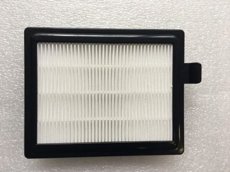 VCFI250 hepa filter Philips-Electrolux